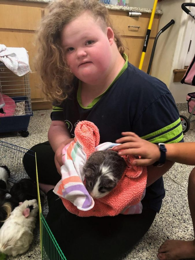 Cuddling her guinea pigs, Bella McCaughey enjoys quality time with her furry friends.